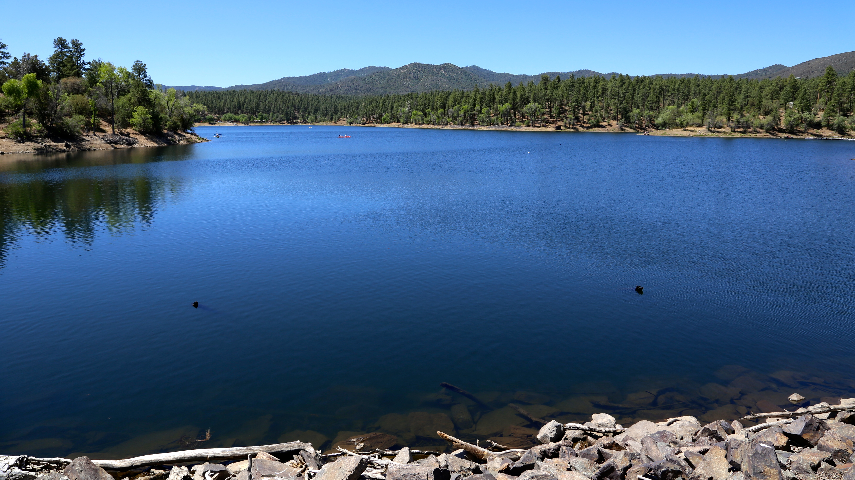 Image gallery lynx lake prescott az for Camping and fishing in arizona